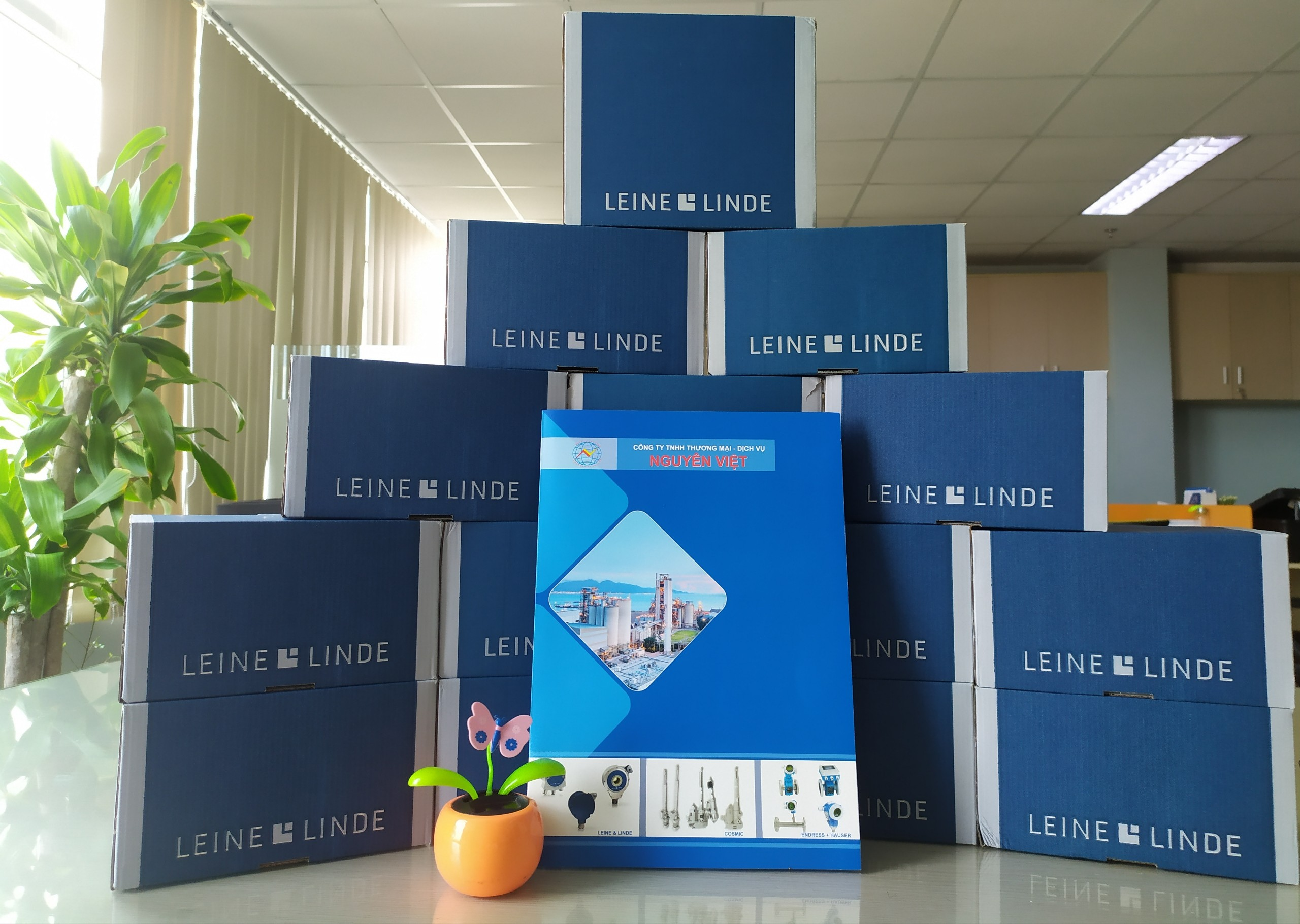 Leine Linde to Nguyen Viet's Customer